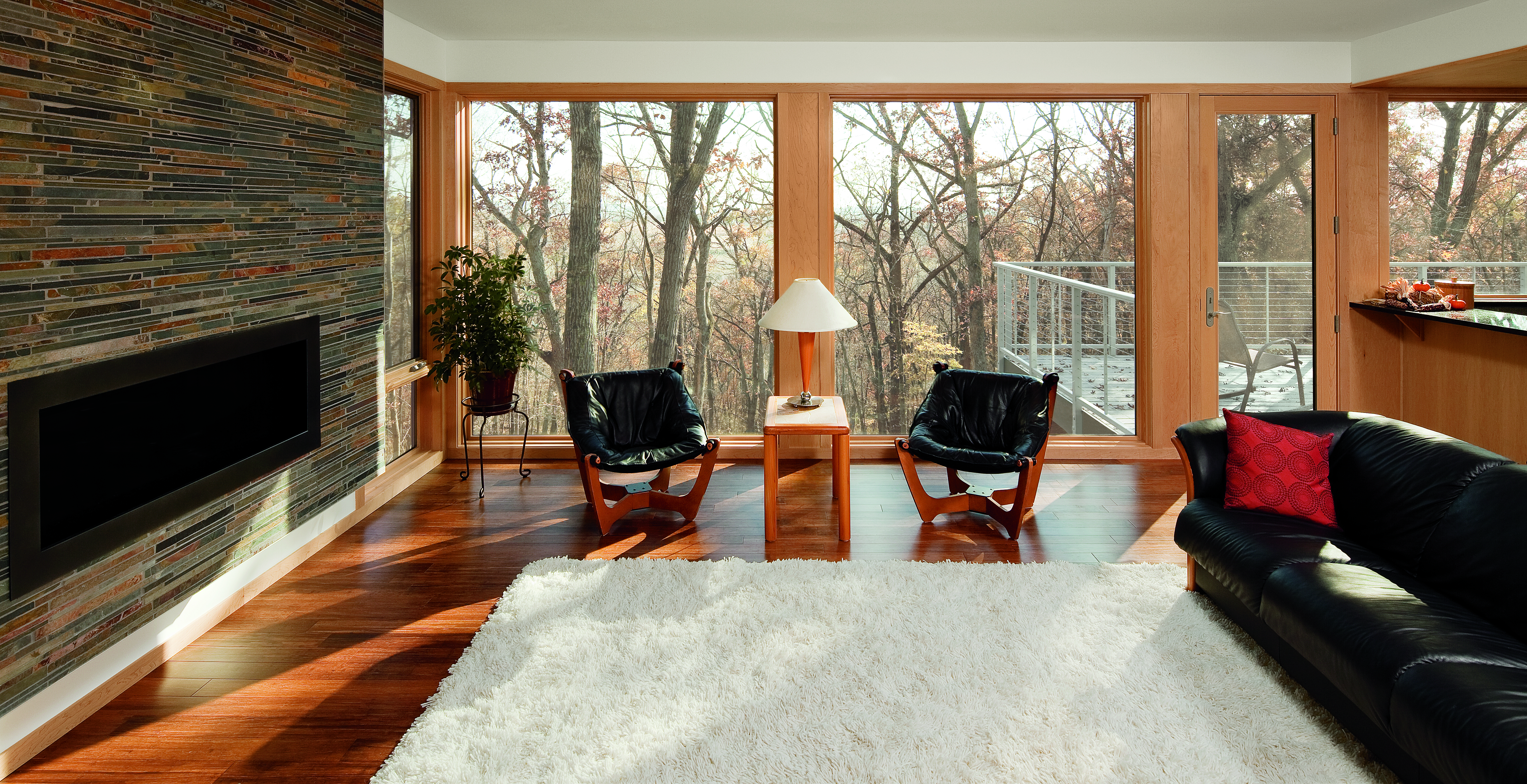 (Picture Window by Marvin Windows)